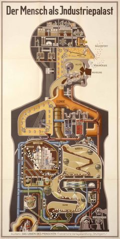 Man as Industrial Machine by Fritz Kahn